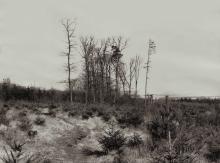 SCHENEC-TADY I by Heinz Emigholz